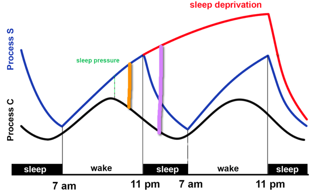 Travel effect on sleep